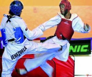 Puzzle de Karate - Dos karatecas practicando