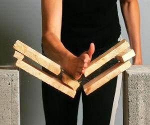 Puzzle de Karateca rompiendo una pieza con un golpe con la mano