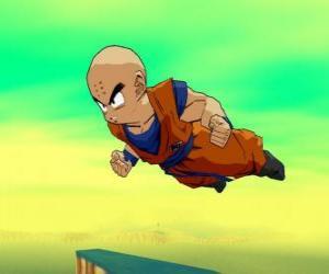 Puzzle de Krilin, es el compañero de Goku y su mejor amigo.