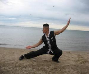 Puzzle de Kung Fu