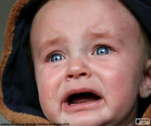 Puzzle de Lágrimas de bebé