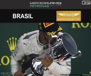 Puzzle de L. Hamilton, GP Brasil 2016