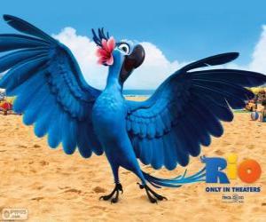 Puzzle de La bella Jewel es un guacamayo hembra en la película Rio