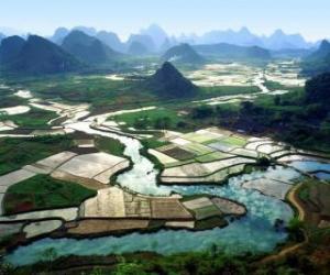 Puzzle de La China rural, el río y los campos de arroz
