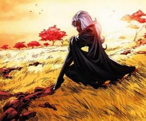 Puzzle de La superheroina Tormenta es un miembro de los X-Men, también conocida como la Pantera Negra
