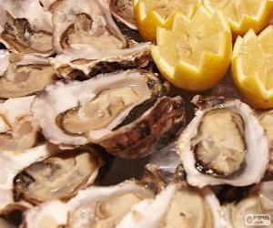 Puzzle de Las ostras