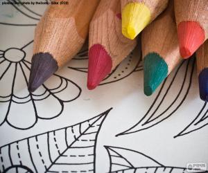 Puzzle de Libro de colorear