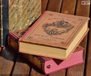 Puzzle de Libros viejos