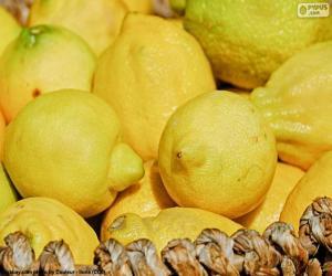 Puzzle de Limones