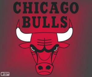 Puzzle de Logo de Chicago Bulls, equipo de NBA. DivisiónCentral,ConferenciaEste