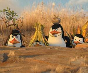 Puzzle de Los pingüinos camuflados