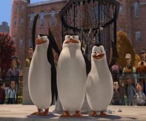 Puzzle de Los pingüinos del zoo de Central Park