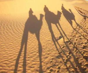 Puzzle de Los tres Reyes Magos a lomos de los camellos en su camino hacia Belén