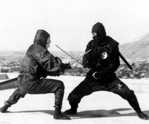 Puzzle de Lucha entre dos ninjas