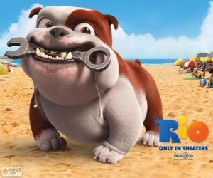 Puzzle de Luiz, un perro bulldog