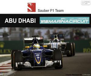 Puzzle de M Ericsson, GP Abu Dhabi 16
