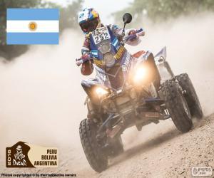 Puzzle de M. Patronelli, Dakar 2016