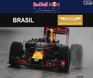 Puzzle de M. Verstappen, GP Brasil 16