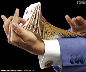 Puzzle de Mago, truco de cartas