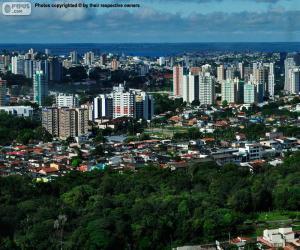 Puzzle de Manaos, Brasil