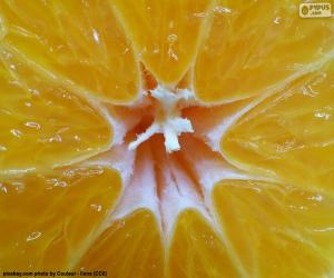 Puzzle de Mandarina por dentro