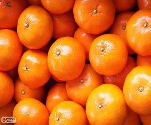 Puzzle de Mandarinas