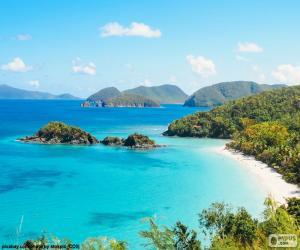 Puzzle de Mar tropical