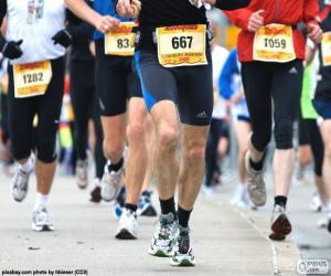 Puzzle de Maratón
