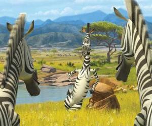Puzzle de Marty hablando con otras cebras
