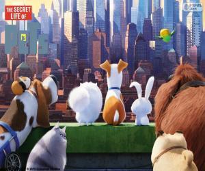 Puzzle de Max observando Manhattan