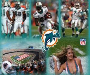 Puzzle de Miami Dolphins