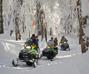 Puzzle de Motonieve o moto de nieve
