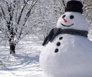 Puzzle de Muñeco de nieve con el sombrero y bufanda