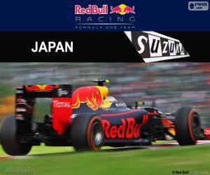 Puzzle de M.Verstappen, GP Japón 2016