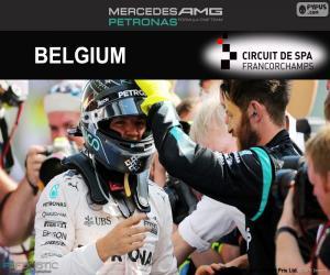 Puzzle de N. Rosberg, GP Bélgica 2016