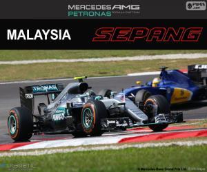 Puzzle de N. Rosberg, GP Malasia 2016