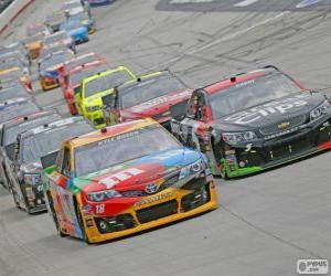 Puzzle de NASCAR Sprint Cup Series