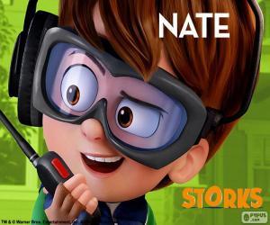 Puzzle de Nate, Cigüeñas