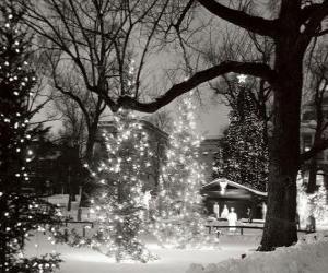 Puzzle de Navidad en el parque