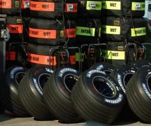 Puzzle de Neumáticos F1