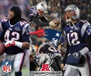 Puzzle de New England Patriots campeón de la AFC 2011