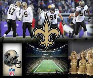 Puzzle de New Orleans Saints
