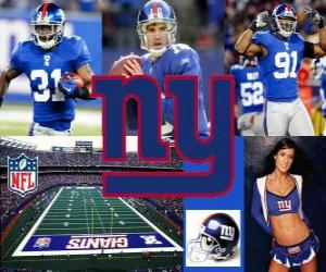 Puzzle de New York Giants
