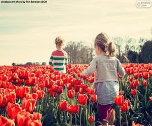 Puzzle de Niñas entre tulipanes