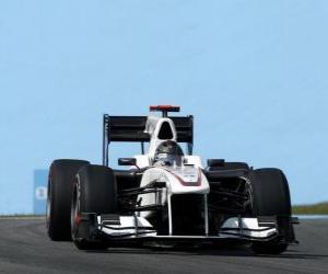 Puzzle de Nick Heidfeld - Sauber - Interlagos 2010