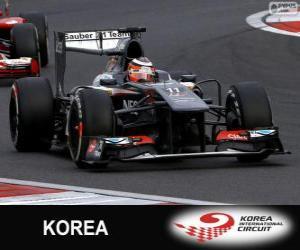 Puzzle de Nico Hulkenberg - Sauber - Circuito Internacional de Corea, 2013