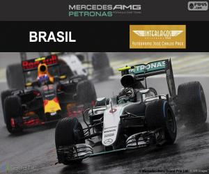 Puzzle de Nico Rosberg GP Brasil 2016