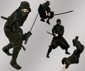 Puzzle de Ninja en varias posiciones