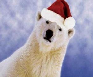 Puzzle de Oso polar con gorro de Papá Noel