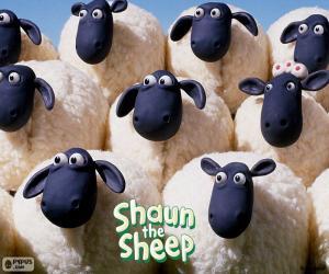Puzzle de Ovejas del rebaño de Shaun